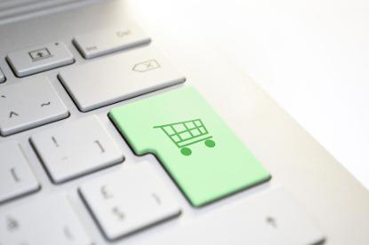 E commerce fraud klein
